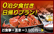 0泊夕食付き日帰りプラン!
